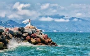 Картинка море, девушка, невеста