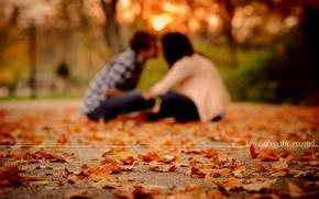 Картинка осень, листья, любовь, девушки, настроение, настроения, листва, пара, love, парни, листопад, mood, парки, пары, парень …