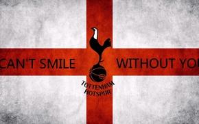 Картинка Football, Tottenham, Spurs