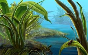 Обои трава, Река, высокая, змея.жук.на, листе