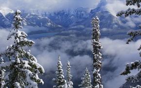 Картинка зима, облака, снег, деревья, горы, озеро, Канада, Альберта, Banff National Park, Alberta, Canada, Банф, Канадские …