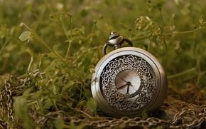 Картинка трава, стрелки, часы