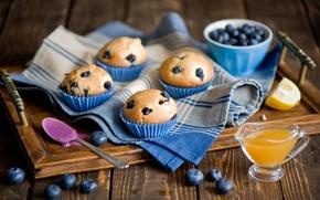 Картинка ягоды, черника, ложка, сладости, фрукты, десерт, лимоны, выпечка, джем, поднос, кексы, Anna Verdina