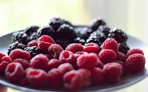 Картинка ягоды, малина, фон, обои, еда, wallpaper, широкоформатные, background, полноэкранные, HD wallpapers, широкоэкранные