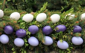 Картинка листья, ветки, праздник, яйца, ель, Пасха, гирлянда, хвоя, декор, крашенки