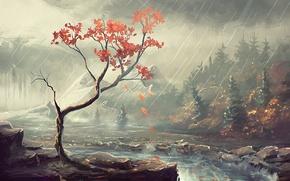 Картинка осень, лес, деревья, река, дождь, берег, арт