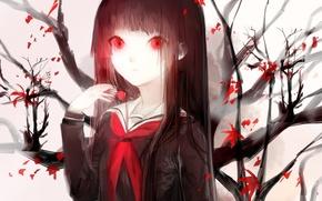 Картинка листья, девушка, ветви, аниме, арт, форма, школьница, sayuki, адская девочка, enma ai, hell girl