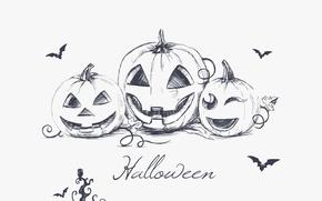 Обои минимализм, Хэллоуин, летучие мыши, halloween, minimalism, bats, evil pumpkins, hand drawing, рука рисунок, creepy owl, ...