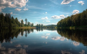 Обои 154, озеро, отражение, деревья