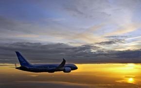 Картинка Boeing 787-8 Drimeliner, Continues, Flight Testing