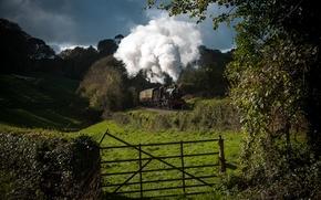 Картинка природа, дым, поезд, паровоз, вагоны