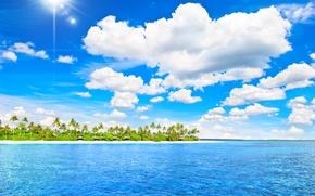 Картинка море, пляж, тропики, пальмы, summer, sunshine, sea, ocean, island, paradise, vacation, palms, tropical