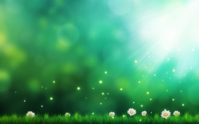 Картинка трава, цветы, рисунок, ромашки, арт, искры, зеленый фон