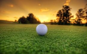 Картинка Grass, Landscape, Golf Ball, Sun Dawn