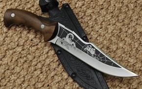 Обои нож, чехол, холодное оружие, скорпион, россия, паук