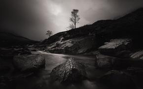 Картинка ночь, река, камни, дерево, Шотландия