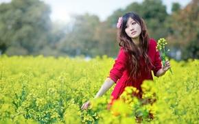 Картинка FIELD, RED DRESS, ASIAN, LONG HAIR, FLOWER