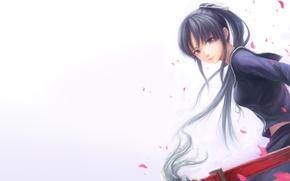 Обои девушка, меч, катана, лепестки, форма, isayama yomi, ga-rei zero