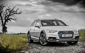 Картинка Audi, ауди, универсал, Avant
