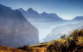 Обои туман, долина, горы