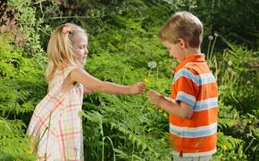 Картинка цветок, трава, любовь, дети, детство, романтика, роза, ребенок, мальчик, пара, девочка, love, rose, grass, flower, …