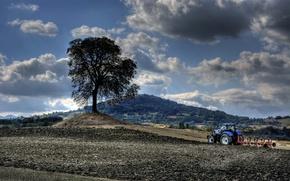 Картинка поле, дерево, трактор