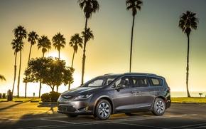 Картинка пальмы, серый, Chrysler, Hybrid, Pacifica