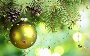 Обои Новый Год, ветка, ель, праздники, бусы, зеленый, игрушки, елочные, шишки, шарик, елка, New Year, шар, ...
