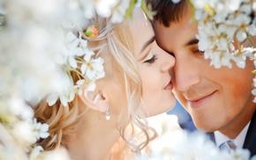 Картинка любовь, цветы, нежность, чувства, свадьба, молодожены