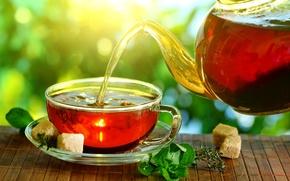 Обои чайник, стол, свет, чай, циновка, заварка, сахар, кусочки, солнце, мята