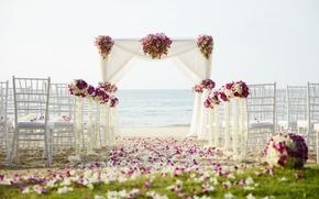Картинка песок, море, цветы, природа, тропики, побережье, стулья, беседка