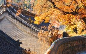 Обои Китай, осень, дом, крыша, Пекин