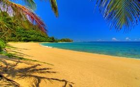 Обои песок, небо, облака, пейзаж, природа, река, пальмы, отдых