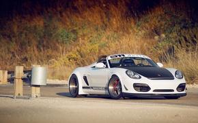 Картинка Porsche, white, Boxster, Spyder