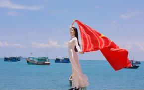 Картинка девушка, лицо, ветер, звезда, платье, флаг, Вьетнам