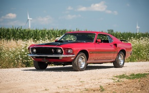 Обои форд, 1969, мустанг, Mustang, Ford