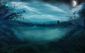 Картинка лес, звезды, ночь, туман, озеро, сова, птица, луна, месяц