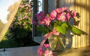 Картинка цветы, Лето, окно, ваза, занавеска