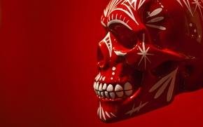 Картинка фон, череп, skull, раскрас