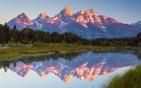 Картинка лес, лето, небо, вода, облака, отражения, горы, США, штат Вайоминг, Июль, национальный парк Гранд-Титон, Schwabachers …