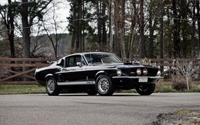 Обои Shelby, 1967, мустанг, форд, GT350, шелби, Mustang, Ford