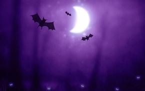 Обои фиолетовый, луна, существа, Halloween, хэллоуин, летучие мыши