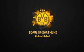 Картинка wallpaper, sport, logo, football, Borussia Dortmund