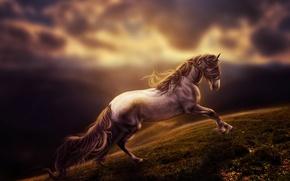 Картинка art, horse, rendering, digital art, run