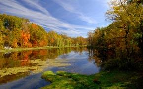 Картинка осень, природа, пруд, парк