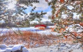 Картинка зима, снег, природа, ветка, мостик