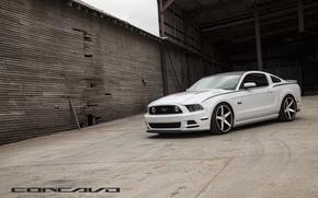 Картинка машина, авто, фары, Mustang, Ford, оптика, auto, Black, Matte, Face, Wheels, Concavo, Machined, CW-5