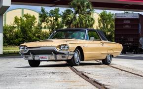 Обои Ford, форд, 1964, Thunderbird, тандерберд