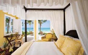 Картинка море, пейзаж, пальма, тепло, комната, океан, обои, интерьер, кресло, виноград, бананы, wallpaper, фрукты, ананас, квартира, …