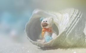Картинка beach, sand, teddy bear, shell